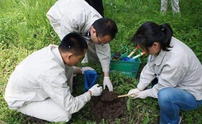 土壤污染风险包括什么?